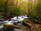 Gatlinburg In October 2015 Guide | Cabins Usa Gatlinburg