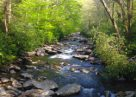 Gatlinburg's 7 Best Swimming Holes | Cabins Usa Gatlinburg