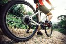 Cycling: Smoky Mountains Trails And Tips