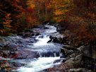Discover The Best Time To See Smoky Mountain Fall Colors In Gatlinburg