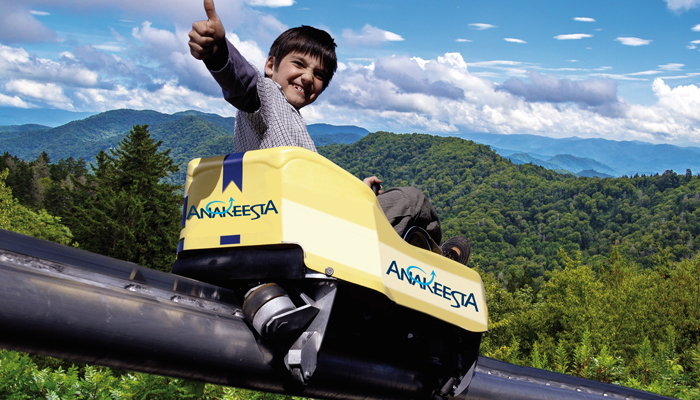 Mountain Coaster at Anakeesta