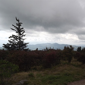 Views From Hiking Trails Near Clingmans Dome