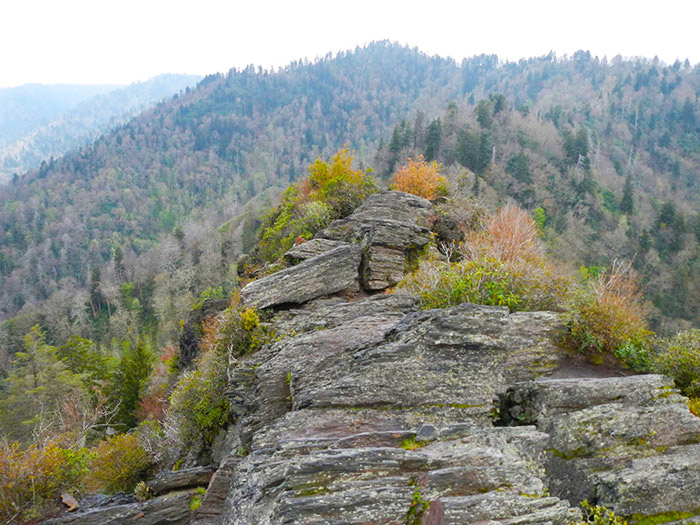 Peak Chimney Tops Hike in the Great Smoky Mountains