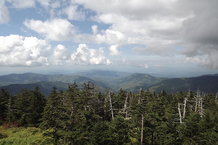 Clingmans Dome View