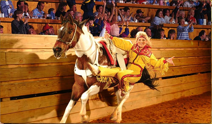 Dolly Parton Dixie Stampede