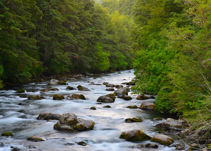 The River in Greenbrier Great Smoky Mountains