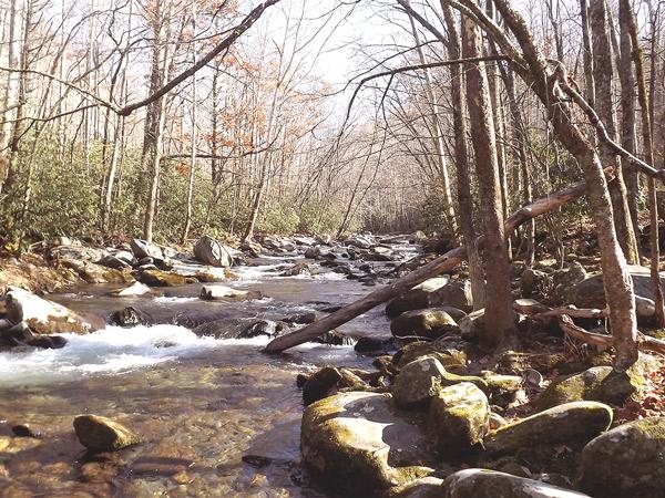 Little River in Elkmont