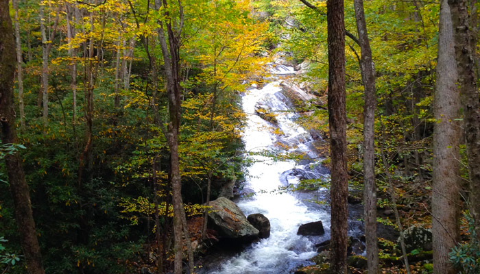 Lynn Camp Falls Middle Prong Trail