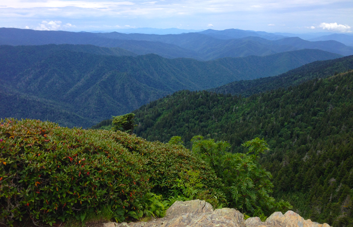 View From Cliff Tops on Mt LeConte