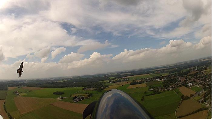 Smoky Mountain Airplane Rides