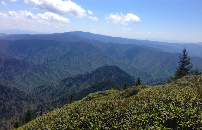 Beautiful July Weather in the Smoky Mountains