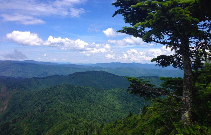 What's New in Gatlinburg 2017 | The Ultimate Guide