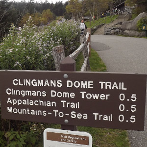 Trail Head For Clingman's Dome