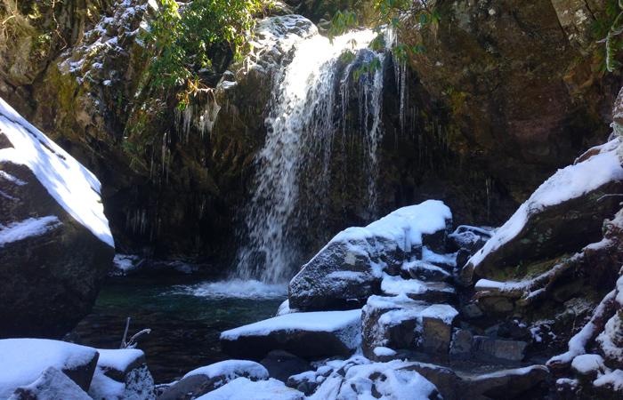 View of Grotto Falls Near Gatlinburg