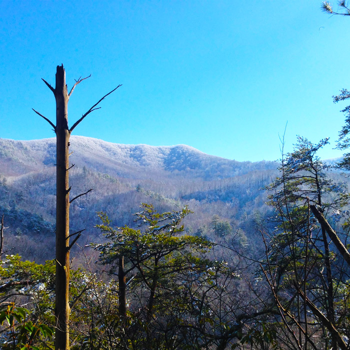 Winter Weather in the Smoky Mountains