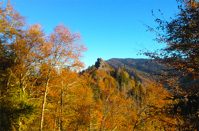 View of the Chimney Tops Near Gatlinburg