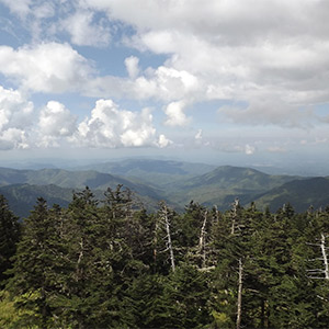 Great Views From Clingman's Dome