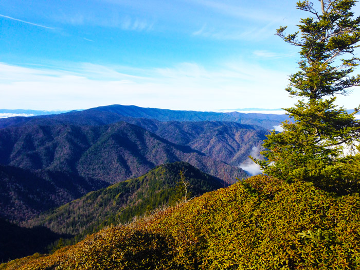 Smoky Mountain Scenic Views