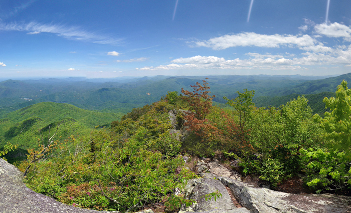 View From Mt. Cammerer Smoky Mountains