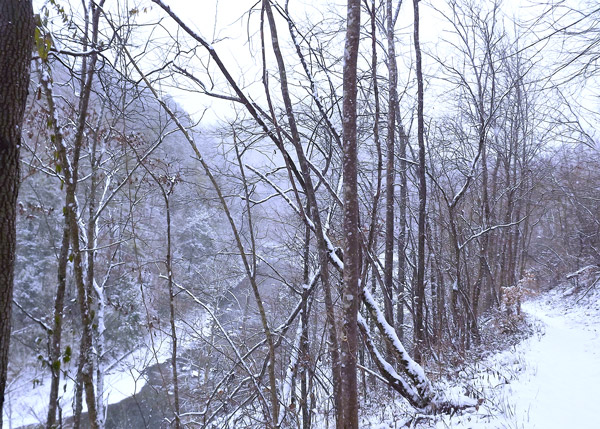 Smoky Mountain Winter Hiking Trail